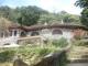 Tour tham quan vườn quốc gia Bạch Mã